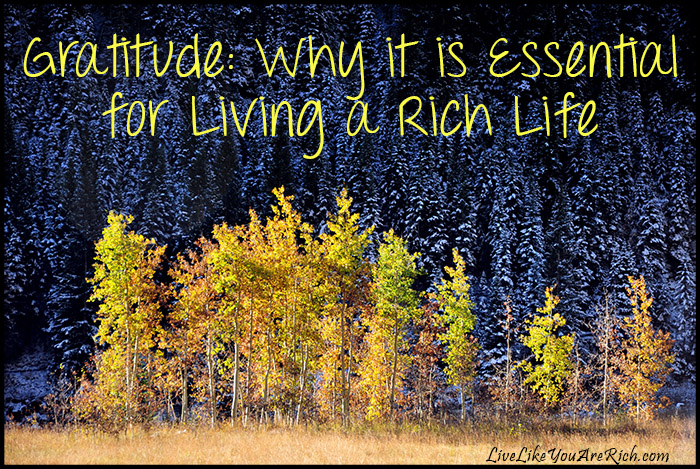Gratitude: Why it is Essential for Living a Rich Life an account of the Natives and Settlers as well.