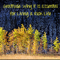 Gratitude…How it Can Improve Your Life Today.