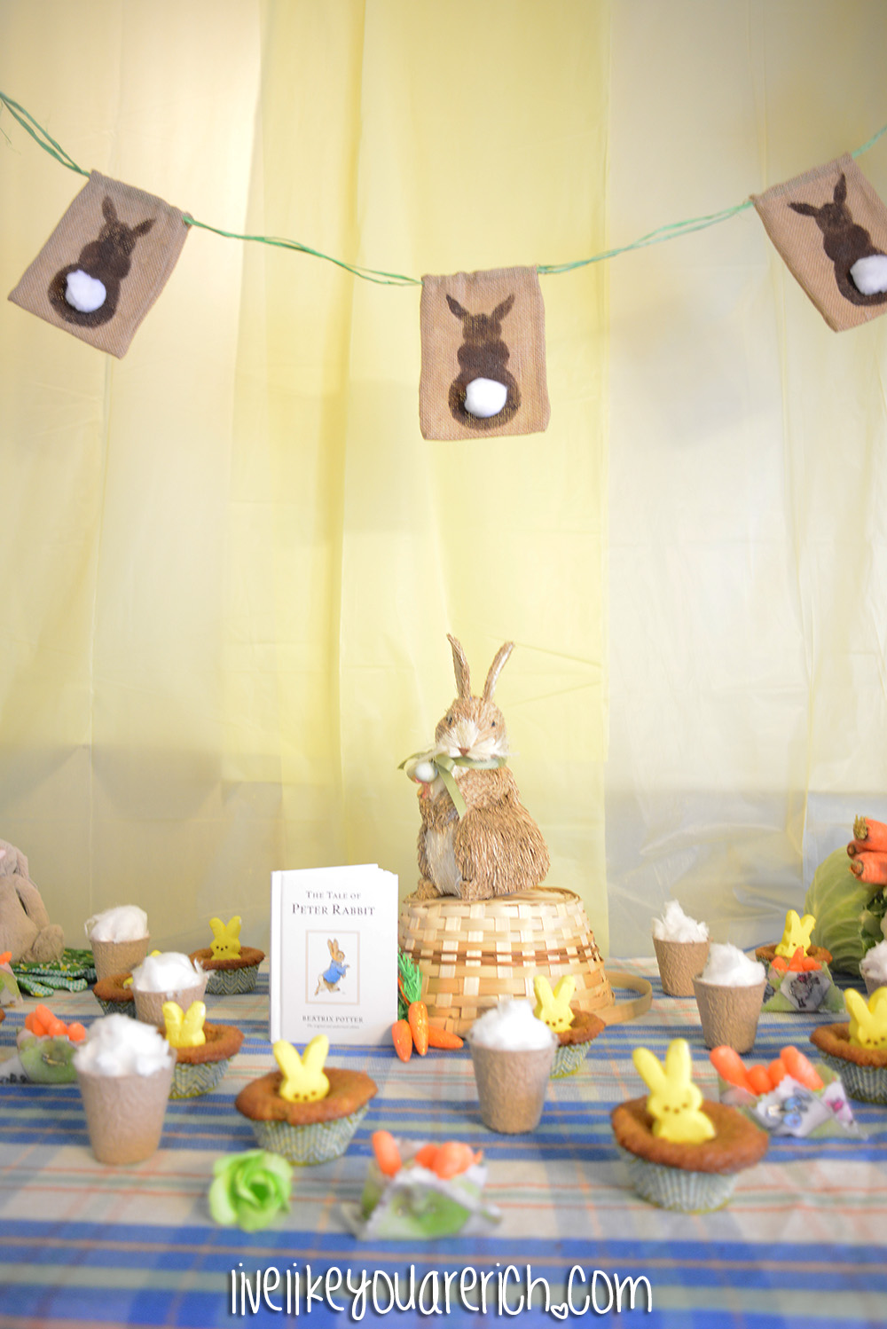 peter rabbit baby shower live like you are rich