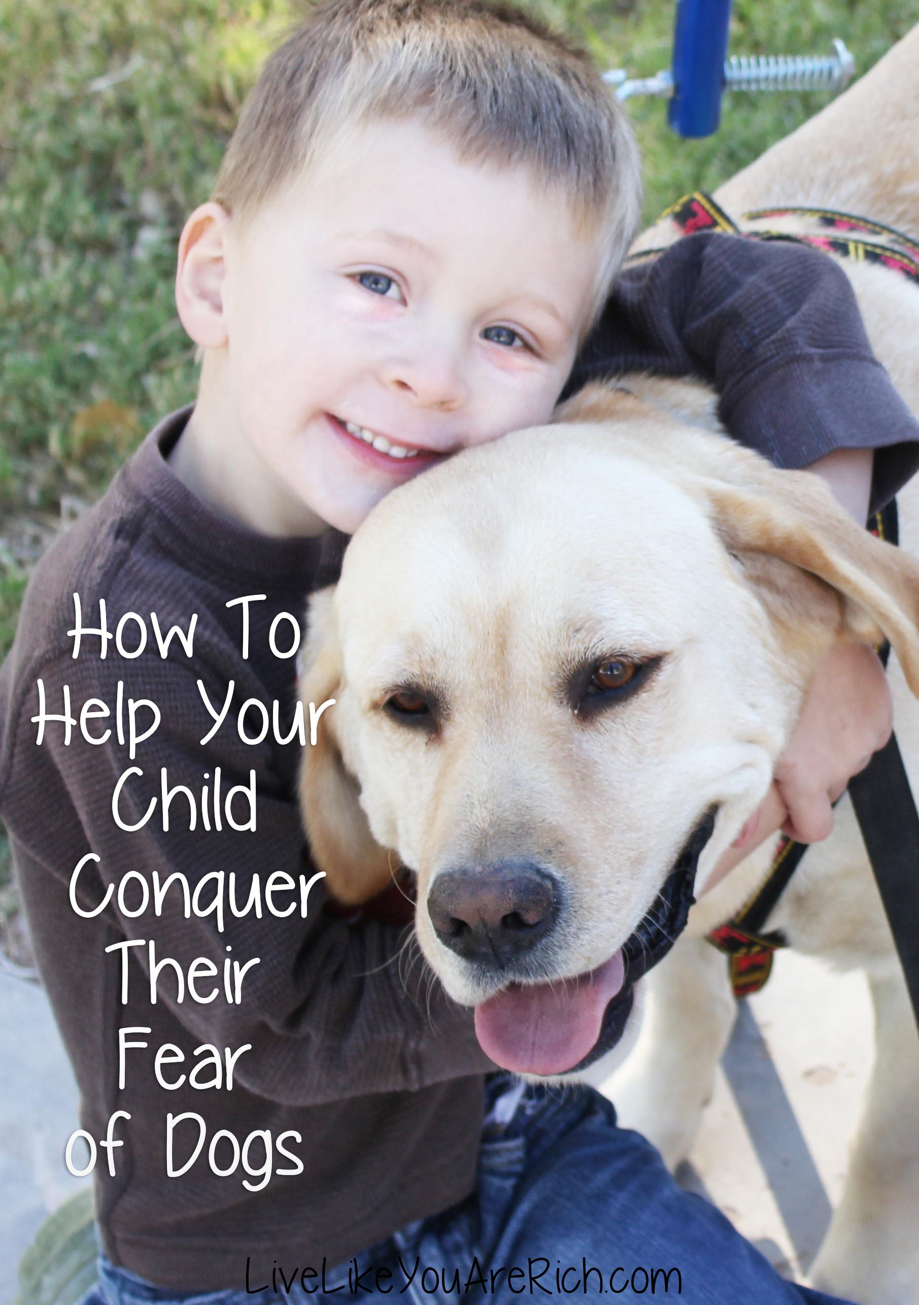 How To Help Your Child Conquer Their Fear of Dogs