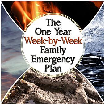 The One Year Week-by-Week Family Emergency Plan