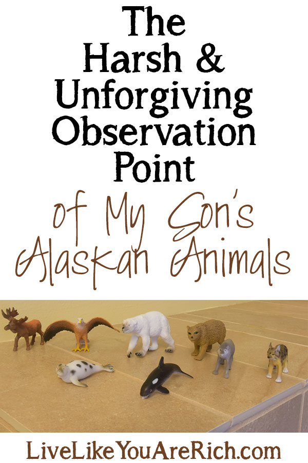 The Harsh and Unforgiving Observation Point of My Son's Alaskan Animals