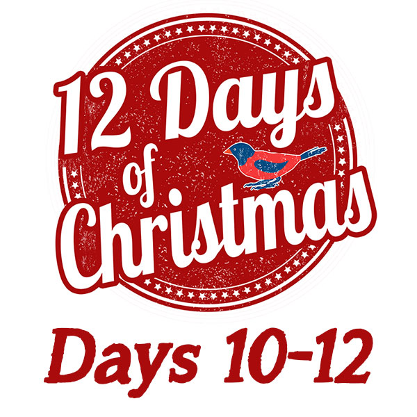 Gift Ideas for The Twelve Days of Christmas Days 10-12