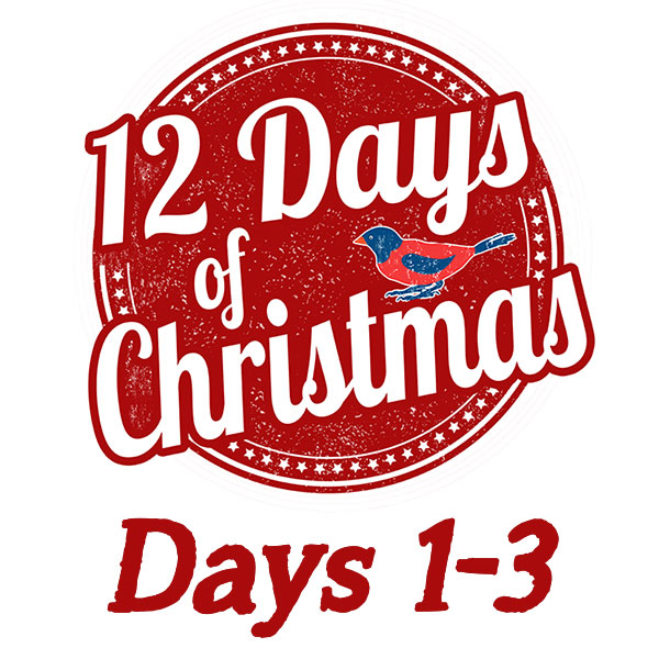 12 Days Of Christmas Gift Ideas.Gift Ideas For The Twelve Days Of Christmas Days 1 3