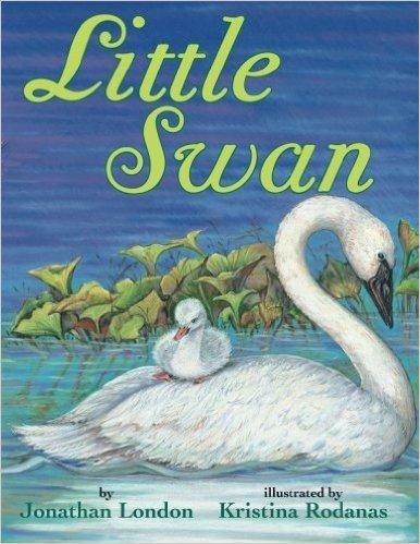 little swan book