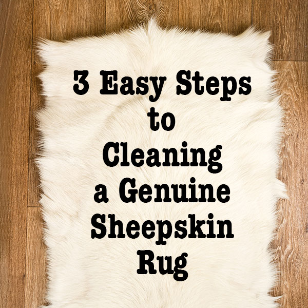 3 Easy Steps To Cleaning A Genuine Sheepskin Rug Live Like
