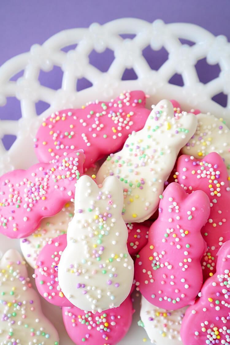 circus animal easter bunny cookies