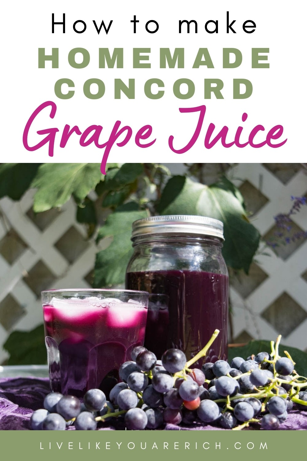 My mom has been an avid concord grape grower. She has many beautiful vines that produce a lot of grapes each Fall. Each Fall, we pick the grapes and juice them. My family and friends love the grape juice — especially mixed with Sprite or pink lemonade and chilled with ice. I'm sharing how she makes this homemade concord grape juice recipe. #grapejuice #concordgrapejuice