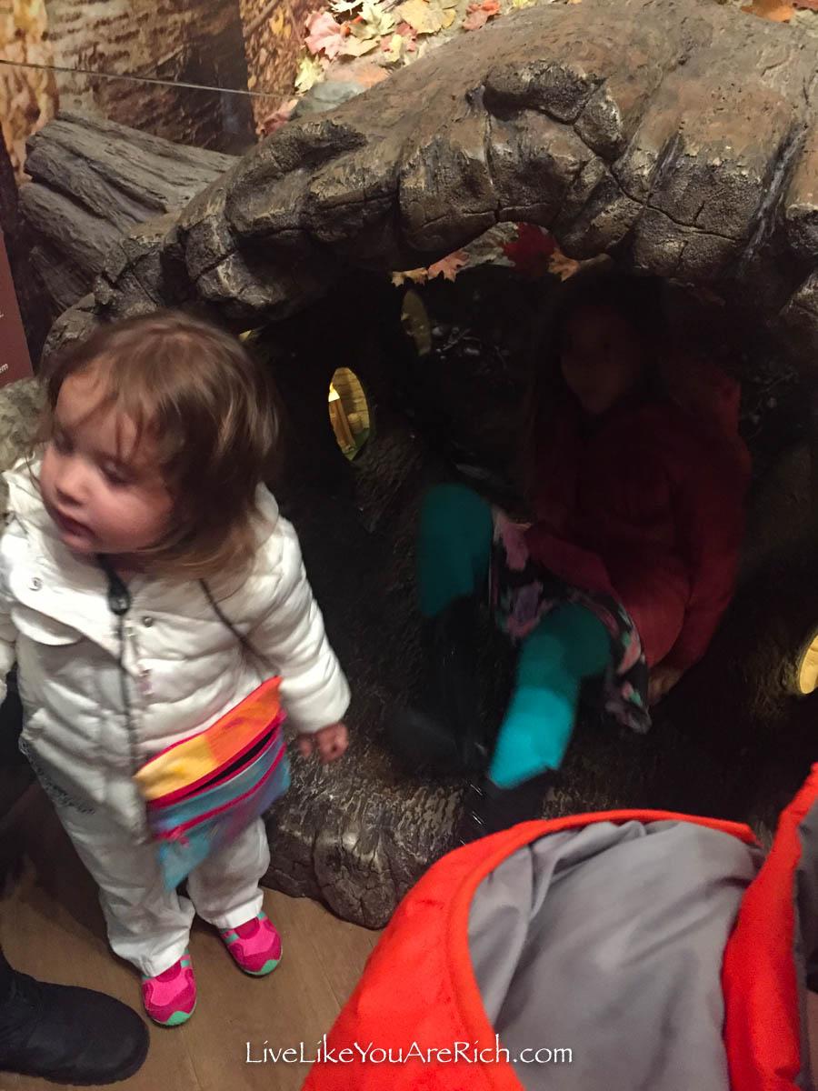 Free Activities for Kids in Utah in the Winter