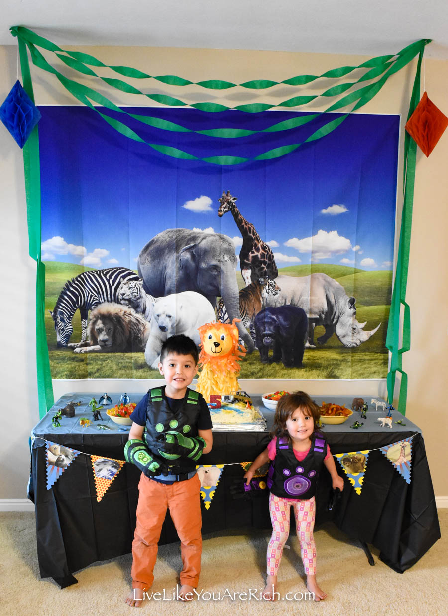 wild kratts birthday party 2