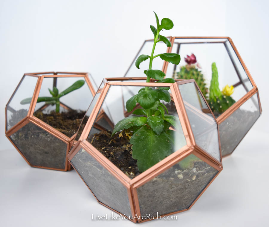 DIY Copper Geo Terrariums