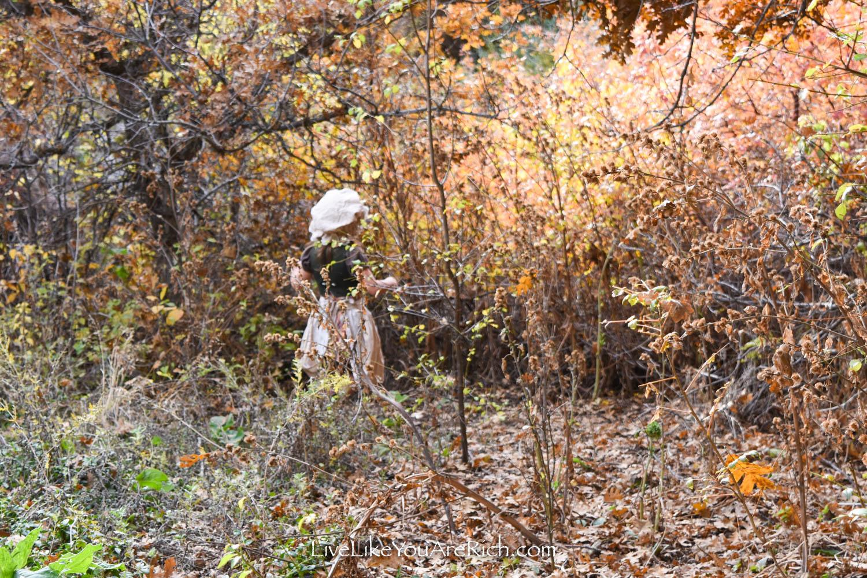 Gretel wandering in woods