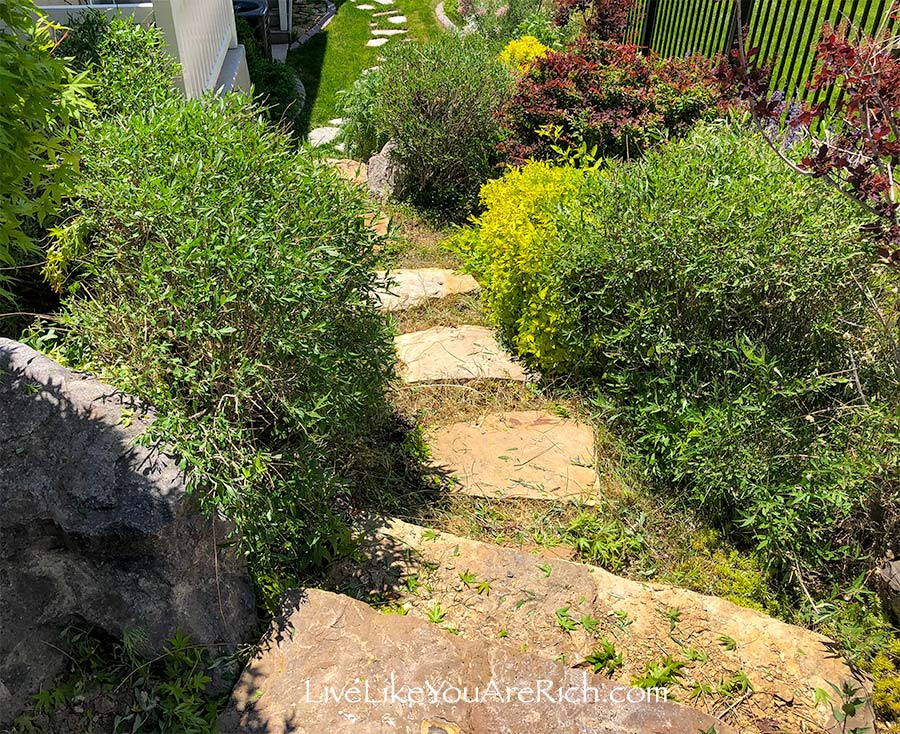 Before - Maintenance-free Weedless Flower Beds in 10 steps.