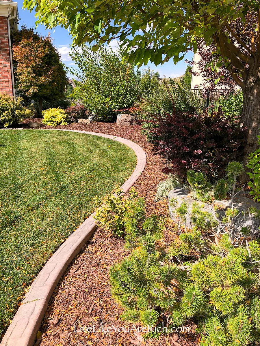 2 months no weeding Maintenance-Free Weedless Flower Beds in 10 Steps