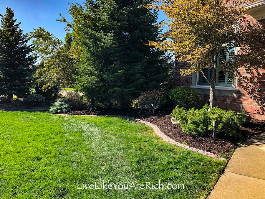 Maintenance-Free Weedless Flower Beds in 10 Steps