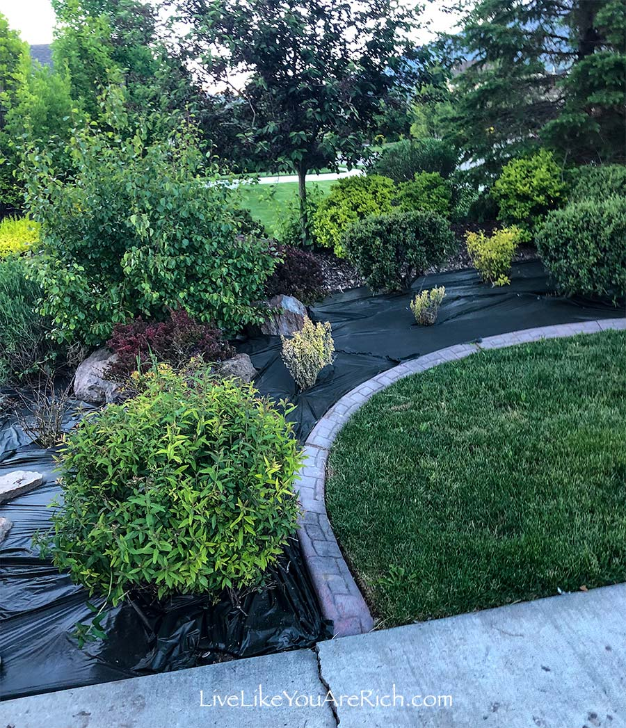 Maintenance-free Weedless Flower Beds in 10 steps.