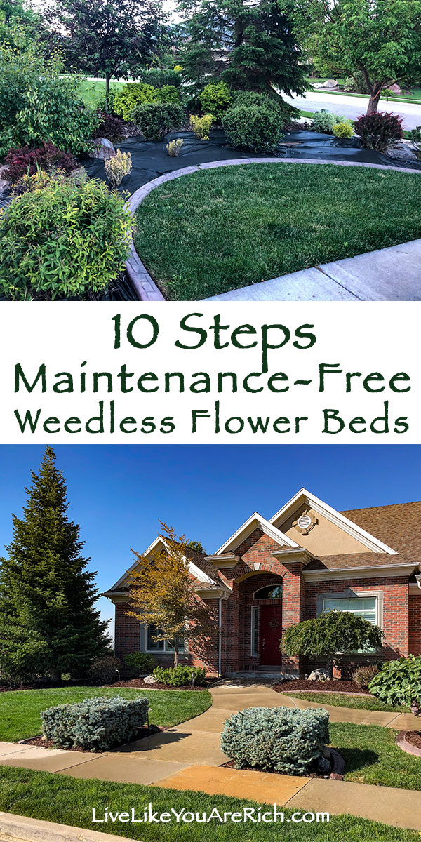 10 Steps of Maintenance-Free Weedless Flower Bed.