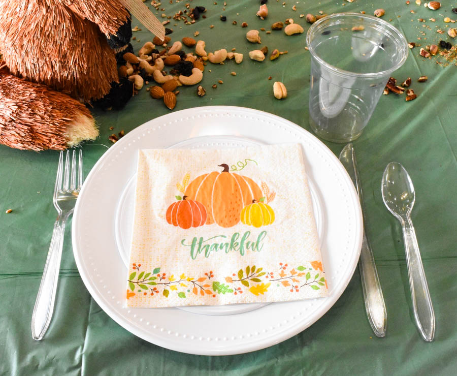 Paper/plastic products for kids Thanksgiving table