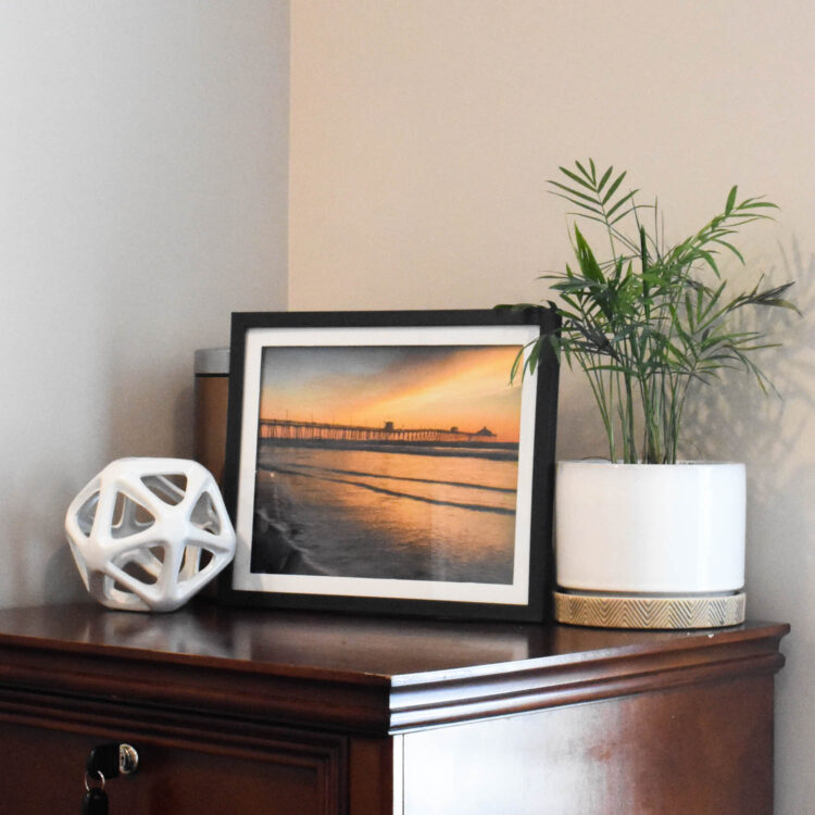 Dollar tree framed landscape photographs